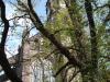 czterechsetletnia_rocznica_wiezy_katedry_045