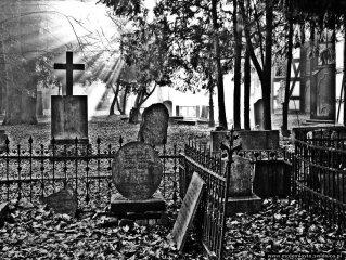 reportaz_ewangelicki_cmentarz_przy_kosciele_pokoju_w_swidnicy_111