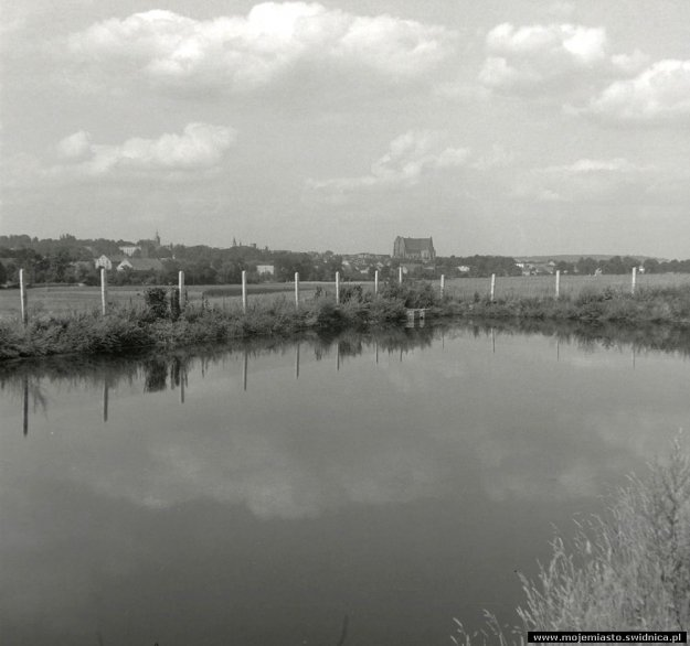 powiat_po_45_strzegom_panorama_001