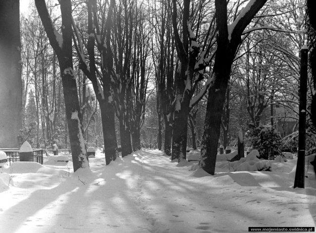 sw_po_45_park_centralny_065