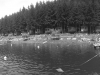 ds_po_45_zagorze_jezioro_045