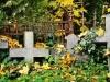 reportaz_ewangelicki_cmentarz_przy_kosciele_pokoju_w_swidnicy_021