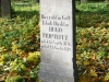 reportaz_ewangelicki_cmentarz_przy_kosciele_pokoju_w_swidnicy_059
