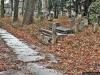 reportaz_ewangelicki_cmentarz_przy_kosciele_pokoju_w_swidnicy_092