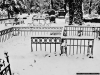 reportaz_kosciol_pokoju_w_zimowej_scenerii_054
