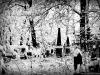 reportaz_kosciol_pokoju_w_zimowej_scenerii_067