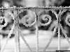 reportaz_kosciol_pokoju_w_zimowej_scenerii_074