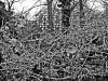 reportaz_kosciol_pokoju_w_zimowej_scenerii_080