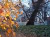 reportaz_most_zelbetowy_w_parku_centralnym_012