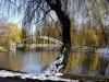 reportaz_most_zelbetowy_w_parku_centralnym_021