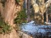reportaz_platan_klonolistny_pomnik_przyrody_w_parku_mlodziezowym_w_swidnicy_046