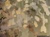reportaz_platan_klonolistny_pomnik_przyrody_w_parku_mlodziezowym_w_swidnicy_052