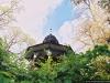 reportaz_platan_klonolistny_pomnik_przyrody_w_parku_mlodziezowym_w_swidnicy_066