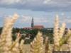 reportaz_swidnickie_wieze_dzien_005