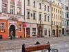reportaz_wizerunki_lwa_w_architekturze_065