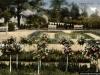 sw_do_45_park_centralny_005