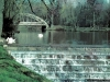 sw_do_45_park_centralny_036