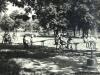 sw_po_45_park_centralny_006