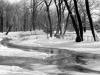 sw_po_45_park_centralny_043
