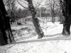 sw_po_45_park_centralny_051