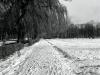 sw_po_45_park_centralny_074
