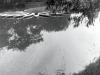sw_po_45_park_centralny_086