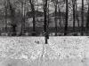 sw_po_45_park_centralny_103