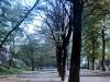 sw_po_45_park_wroclawski_001
