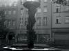 sw_po_45_rynek_pld_100