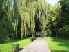 sw_po_99_park_centralny_003