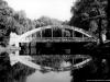 sw_po_99_park_centralny_012