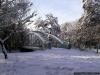 sw_po_99_park_centralny_015
