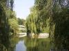 sw_po_99_park_centralny_018