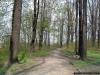 sw_po_99_park_sikorskiego_009