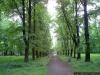 sw_po_99_park_zawiszowski_001
