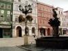 sw_po_99_rynek_pln_003