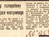 varia_po_45_gazeta_robotnicza_093